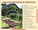 Click image for larger version.  Name:chart_urban_homestead_growingmethods.jpg Views:38 Size:1.01 MB ID:113342
