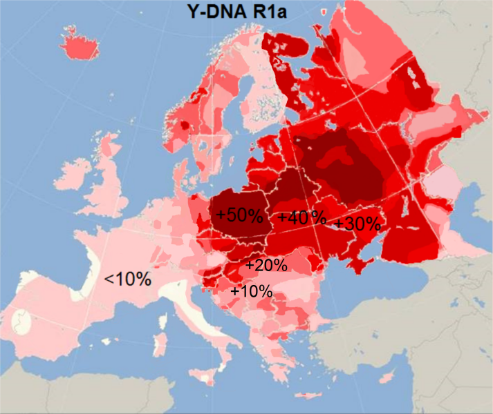 Name:  Y_Haplogroup_R1a.png