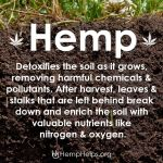 Hemp Advantages