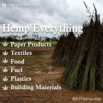 Hemp Everything