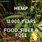Hemp for 12.000 Years