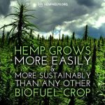 Hemp is the best biofuel