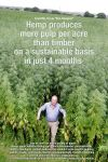 Hemp produces more pulp per acre