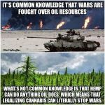 Hemp vs Oil