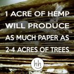 Hemp vs Trees