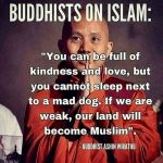A Buddhist about Islam